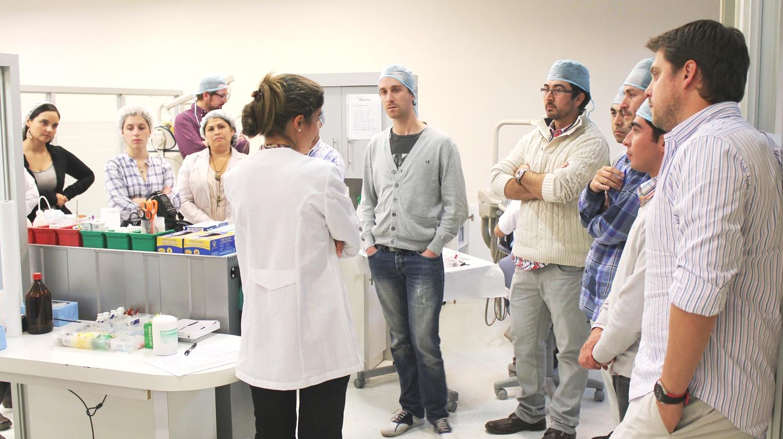 Promoción Ortodoncia 2013