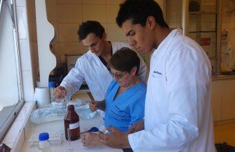 Innovadora investigación en Odontología UDD